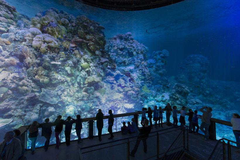Vue du dernier étage de la rotonde du panoarma exposant la toile de la Grande Barrière de Corail durant une visite libre